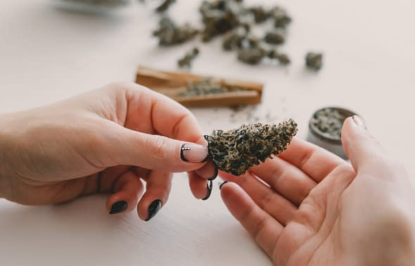 San Diego County Declines To End Cannabis Ban